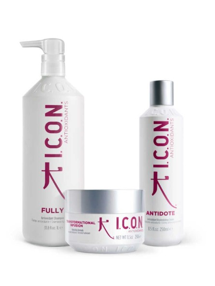 Pack ICON Antioxidants Fully 1000ml + Antidote + Transformational Infusion